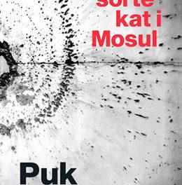Den sorte kat i Mosul