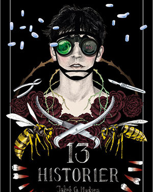 13 historier