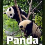 FC Barcelona, Panda og madspild